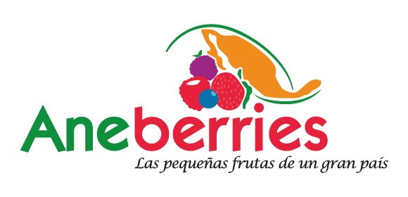 congreso_aneberries_dmagromallas