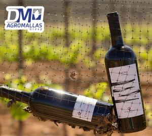 malla-antipajaro-antibirds-tenax-vinicola-ensenada-dmagromallas-dmtecnologias-14